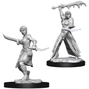 https://mabrik.ee/wp-content/uploads/2021/02/DampD-Nolzurs-Marvelous-Miniatures-Female-Human-Rogue-300x300.jpg