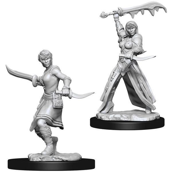 https://mabrik.ee/wp-content/uploads/2021/02/DampD-Nolzurs-Marvelous-Miniatures-Female-Human-Rogue.jpg